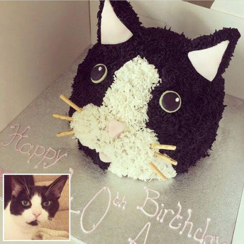 Image of Cat Portrait Cake